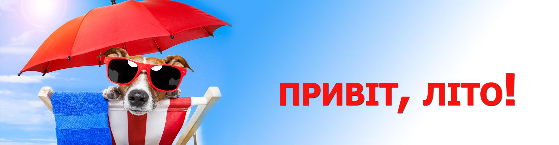 Привіт, літо!!! - 7 Червня 2019 - Блог - Шкільний сайт Ірпінського ...